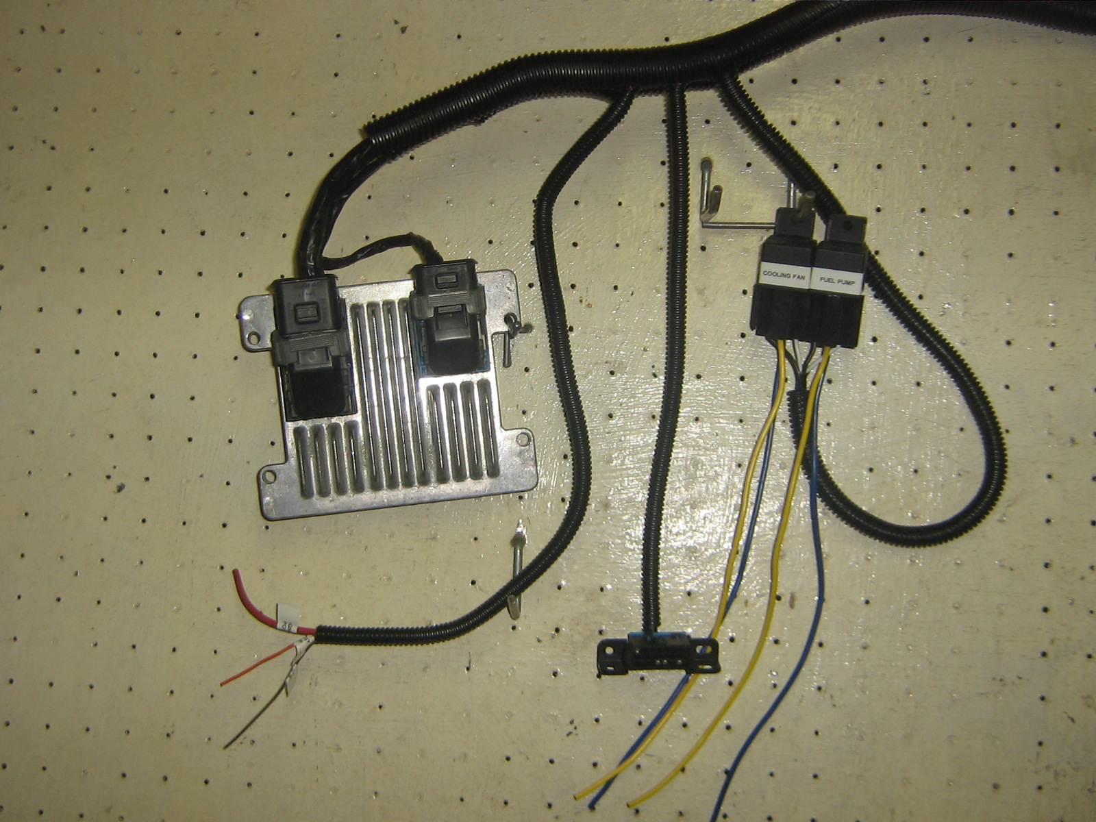 ecotec wiring harness standalone ford 5 0 wiring harness standalone
